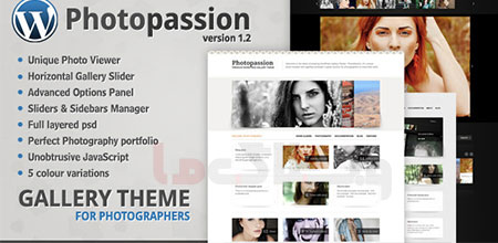 wordpress_theme10